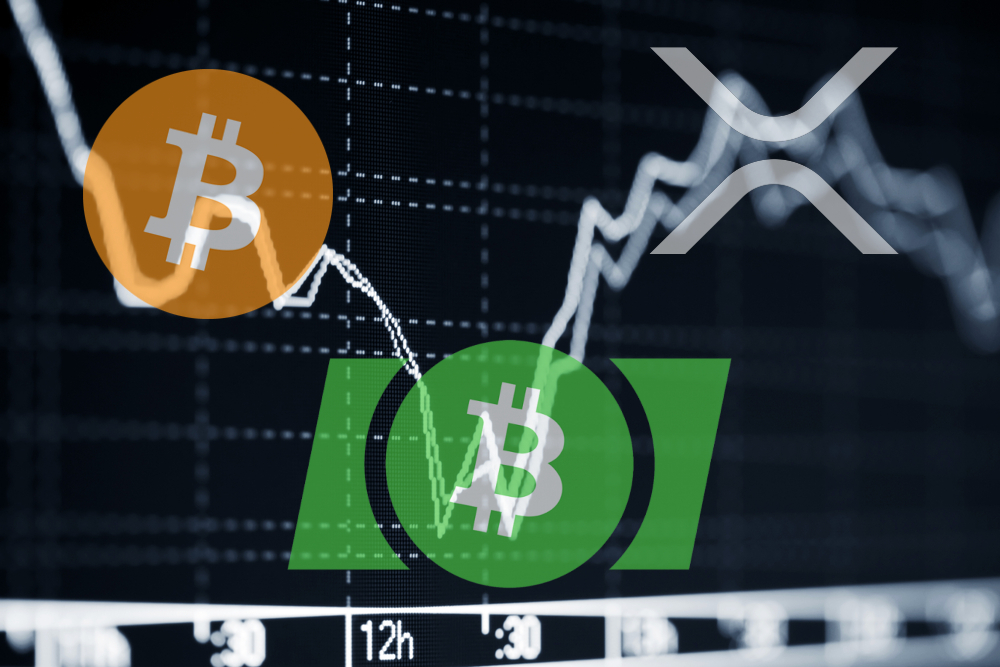 Everything You want to understand Bitcoin Cash is the place for a system upgrade this season